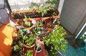 Simple et évolutive pi framboise jardin irrogation