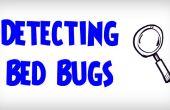 ULTIMATE Guide sur comment détecter les punaises de lit | Détection d'une Infestation de punaises de lit