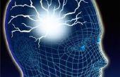 Comment former votre cerveau gratuite