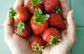 Confiture de fraises rhubarbe