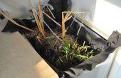 Filtrer vos eaux grises de blanchisserie avec des plantes de marais !