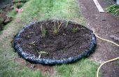 Construire une tourbière des plantes carnivores dans votre jardin !