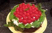 """""""Brownie"""" Double Stack, framboise bio & menthe gâteau avec glaçage fromage à la crème"""