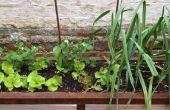 Planteur de jardin et coin