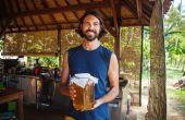 Comment faire pour démarrer votre première brasserie Kombucha Mini