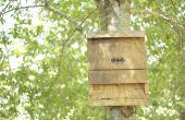 La maison de la chauve-souris : un vert, l'énergie efficace Insect Repellant