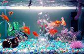Une eau cristalline || Aquarium Power Filter Mod