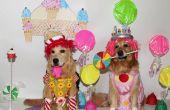 Le jeu de Candyland s'agit de Costumes de la vie
