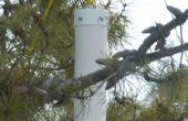 Mangeoire à oiseaux preuve d'écureuil