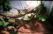 Ce qui porte à l'extérieur, créant un vivarium pour un Python tapis
