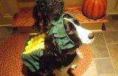 Costume de chien « SWEET CORN »