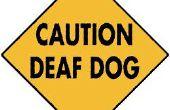 Un collier d'appelant chien vibrant des sourds