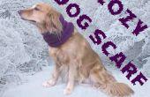 Cozy tricot chien écharpe