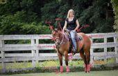 Seller un cheval Ouest