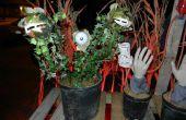 Candy monstre plante