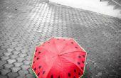 Cadeau un parapluie de pastèque peints à la main !