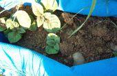 Sacs de pommes de terre de plastiques recyclés