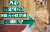 Scavenger « Masquer & chercher » jeu pour chiens