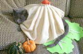 Costume de chat bricolage : Soupe boulette !