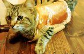 Sauveteur de costume pour les chats
