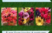 Alice dans l'écarquillés de merveilles aux yeux des décorations florales
