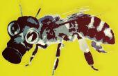 Apporter une abeille au travail de jour.