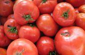 10 minute tomates en conserve de la pression