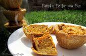 Pumpkin Pie est réputée pour votre chiot