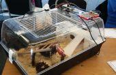 Cage de hamster tweeting