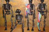 Apprendre l'anatomie musculaire avec un squelette d'Halloween