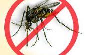 La dengue anti-moustique - repoussant para Mosquito da la Dengue