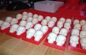 Crânes de chocolat blanc en barquettes PLA
