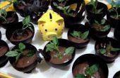 Mousse Choco Basil dans des tasses de chocolat: P