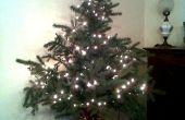 Sapin de Noël gratuit