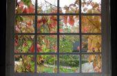 Isolez vos fenêtres