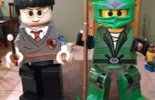 LEGO Harry Potter & verte jeunesse Ninjago Costumes