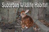 Réseau express régional Habitat pour les animaux à l'état sauvage