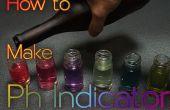 Comment faire pH indicateur