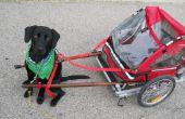 Chariot de traction bricolage chien faite d'une remorque de vélo pliant.