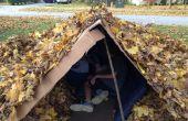 Construction d'une maison de feuilles