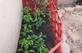 Comment mettre à jour votre jardin chaque année pour les fleurs, légumes ou vignes