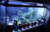 Incroyablement Simple aquaponique