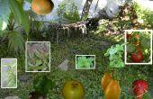 Conseils pour un jardin de GOURMET Complete, à bon compte !