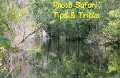 Photo Safari tours & conseils