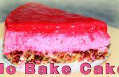 AUCUNE cuisson gâteau framboise, gâteau sans oeufs et sans farine
