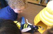 Le jeu Bee interactive