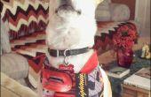Couture pour les hommes : Projet-chien Bandana du débutant