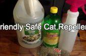 Facile (mais efficace) répulsif Cat