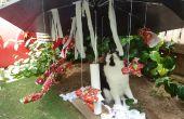 Noël tropical Cat « Arbre »
