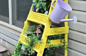 Jardin d'herbes aromatiques Ladder planteur